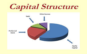 Capital-structure.