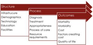 Structure Process Outcome Model